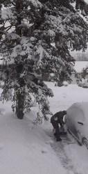 Attila shovels feb 16 2016