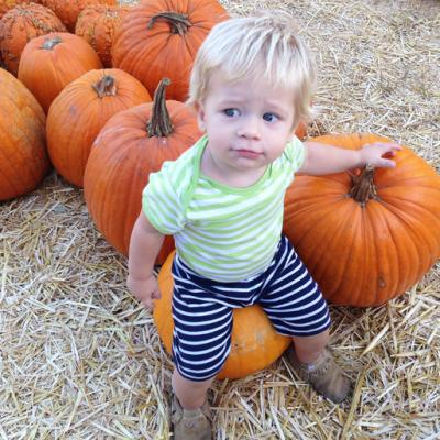 An adventure to the pumpkin patch!