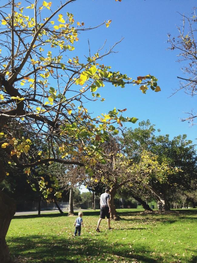 LA park maggie whitley
