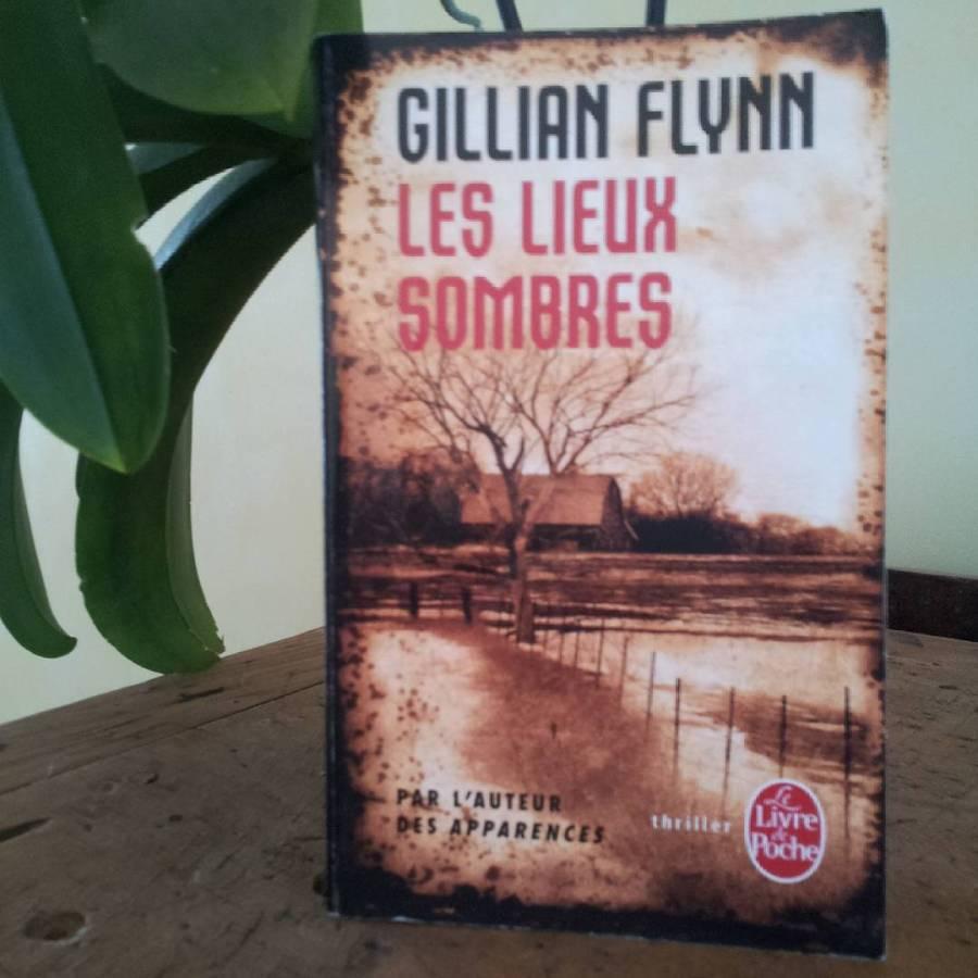 Les-Lieux-Sombres_Gillian-Flynn
