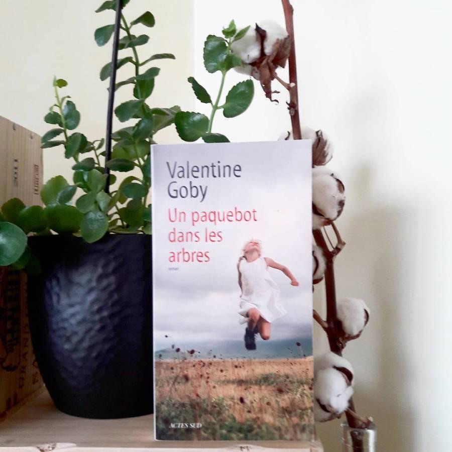 Couverture Un Paquebot dans les arbres de Valentine Goby