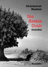 abdelwahab-meddeb-ibn-arabis-grab