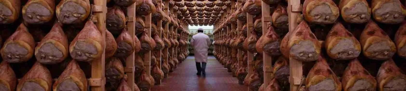 Le escort Parma adorano degustare il prosciutto crudo di Parma sorseggiando dell'ottimo vino in compagnia di uomini brillanti. Magica Escort