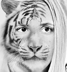 Tiger Lili