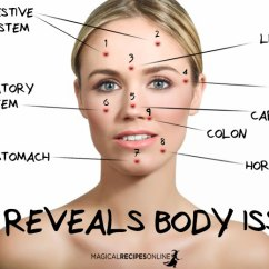 Hormonal Acne Diagram 2016 F150 Tailgate Wiring Reveals Body Issues Chinese Face Map Magical Recipes Online