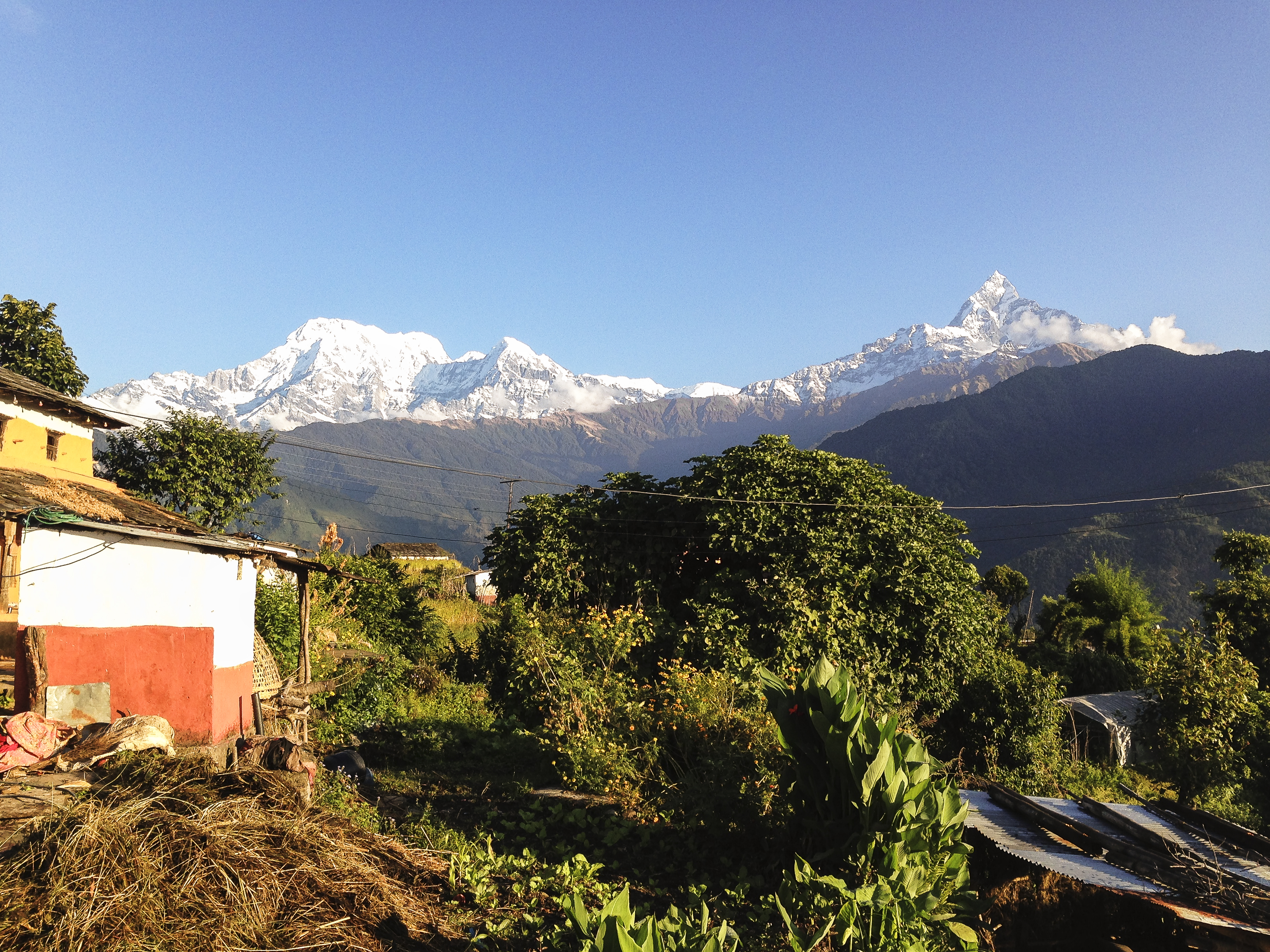 Backpacking Across Nepal Part 4 Pokhara Magic Beans And Happiness