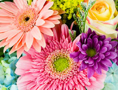 Flower Delivery Magic City Floral