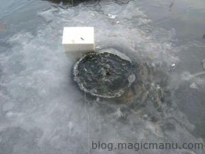Blog de magicmanu : Aménagement de notre maison, Poissons surgelés