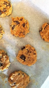 Finished Paleo Cookie