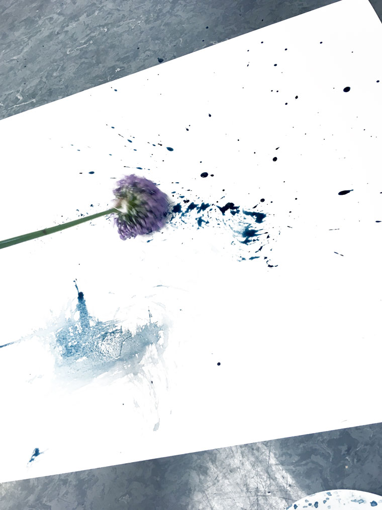 creativity,a brush of a flower