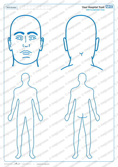small resolution of body diagram