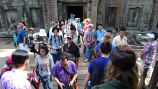 Busy Busy Busy at Ta Prohm Angkor