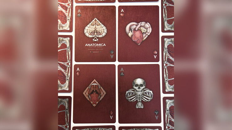 Alterna Playing Cards