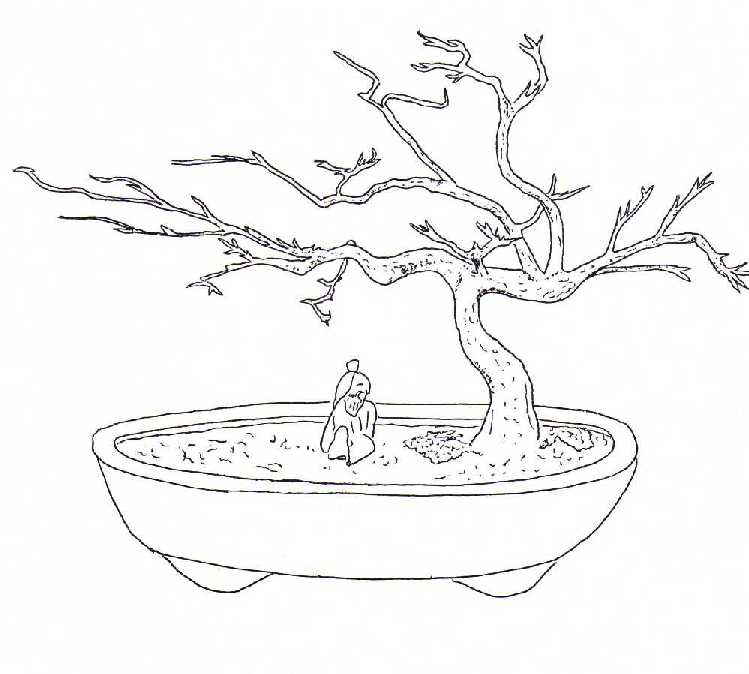 Bonsai Tree Coloring Pages