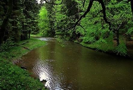 Genuss und Fluss im Kamptal – Sonntag, 21. April 2013