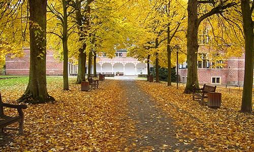 Wohlfühl Tipps für Herbst und Winter