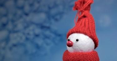 Buone feste dall'uomo di neve