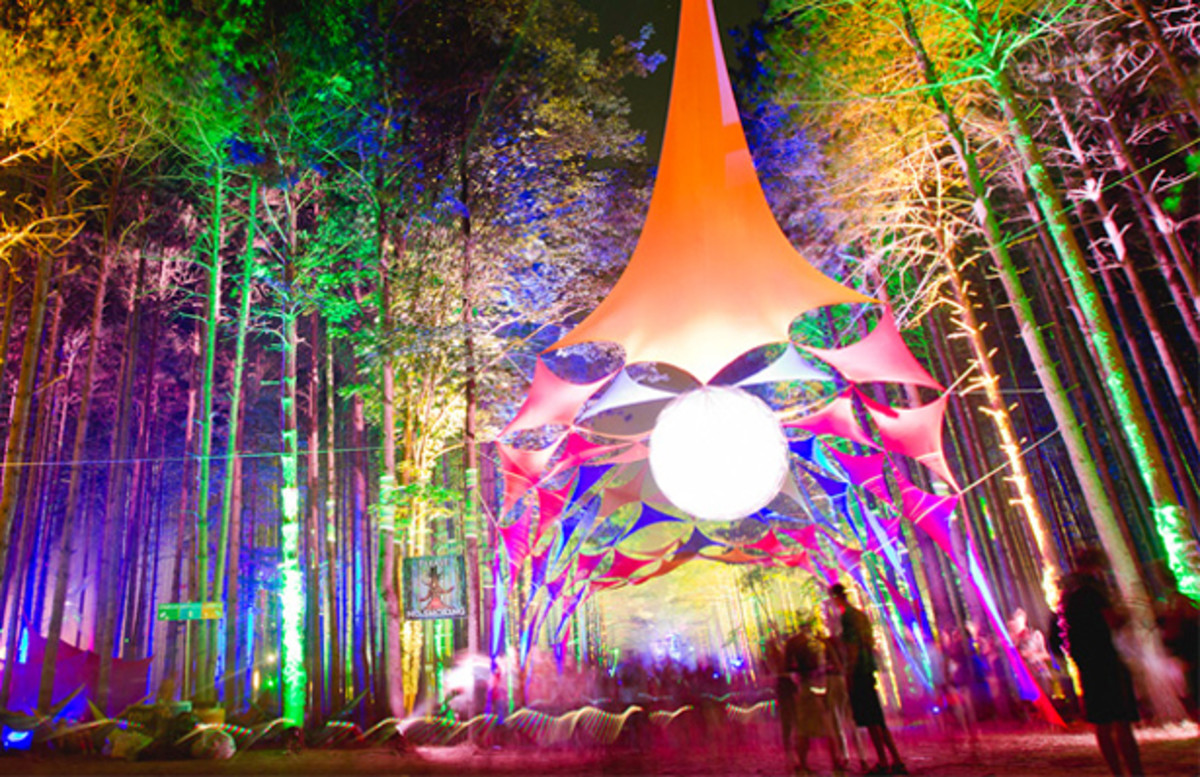 Electric Forest Lineup  Sherwood Forest Expansion Announced  Magnetic Magazine