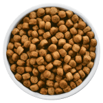 Dog Food Image