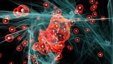 particules quantiques