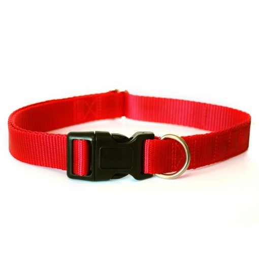 Red magnetic dog collar by Canine Magnetix