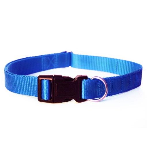 Blue magnetic dog collar