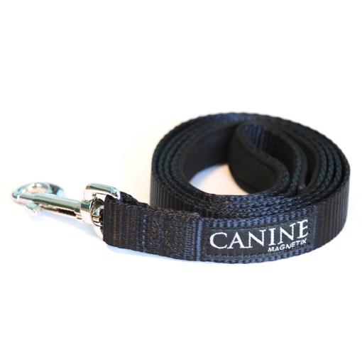 Black dog collar lead - Canine Magnetix