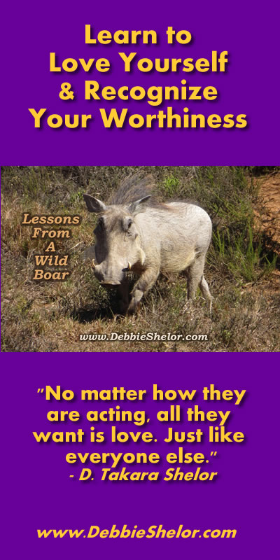 Love and Worthiness Lessons from a Wild Boar