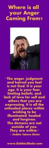Quote by Bestselling Author Debbie Takara Shelor about Anger and Judgment