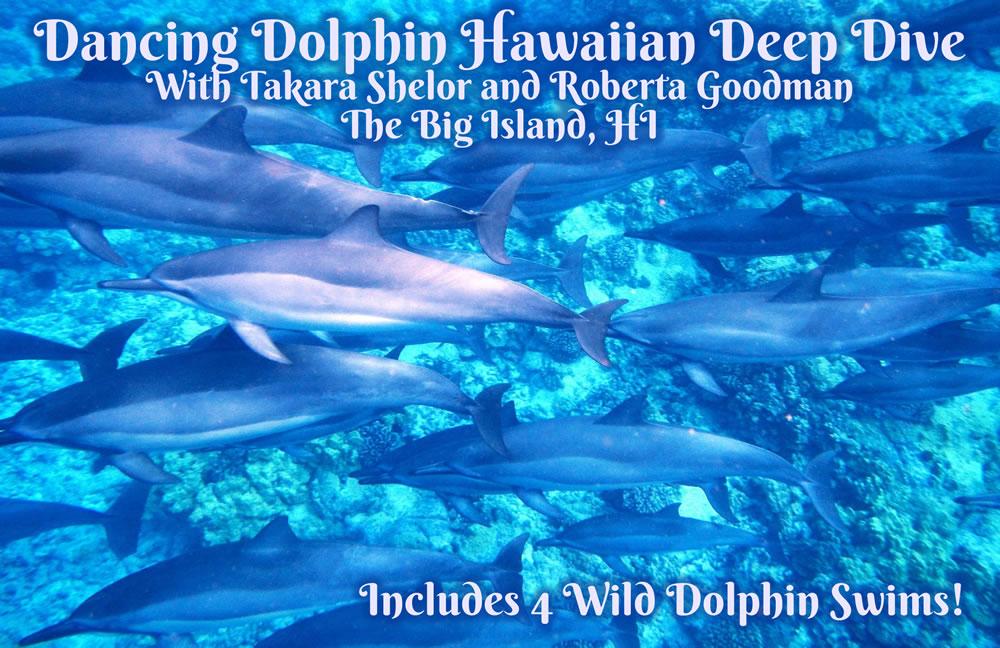 Dancing Dolphin Hawaiian Deep Dive with 4 wild dolphin swims on The Big Island, HI