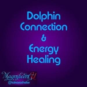 Dolphin Energy Healing