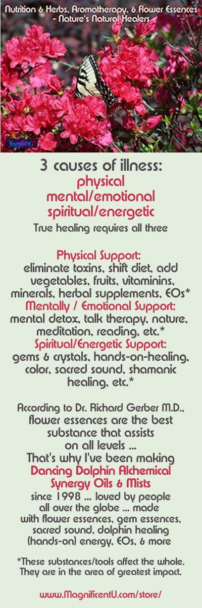Flower Essences Essential Oils Herbs For Healing