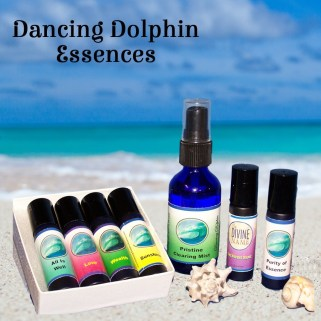 Dancing Dolphin Flower Essences, Gem Essences, Dolphin Healing Energy, Sacred Sound, Aromatherapy