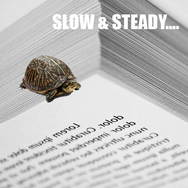 Revision Process: S-L-O-W