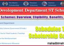 Tribal Development Department ST Scholarship List | Overview | Eligibility | Benefits & Required Document List. 3