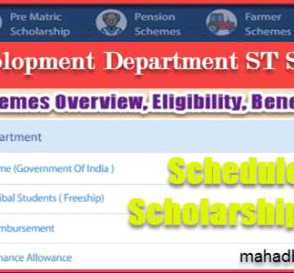 Tribal Development Department ST Scholarship List | Overview | Eligibility | Benefits & Required Document List. 7