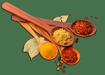 Libro en PDF de Cocina Ayurveda