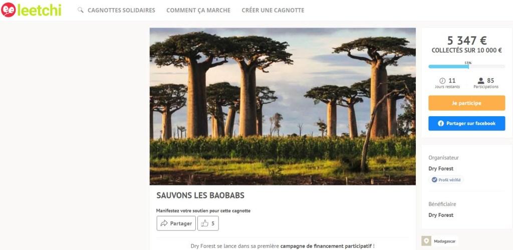 Découvrez le projet de financement participatif de l'ONG Dry Forest