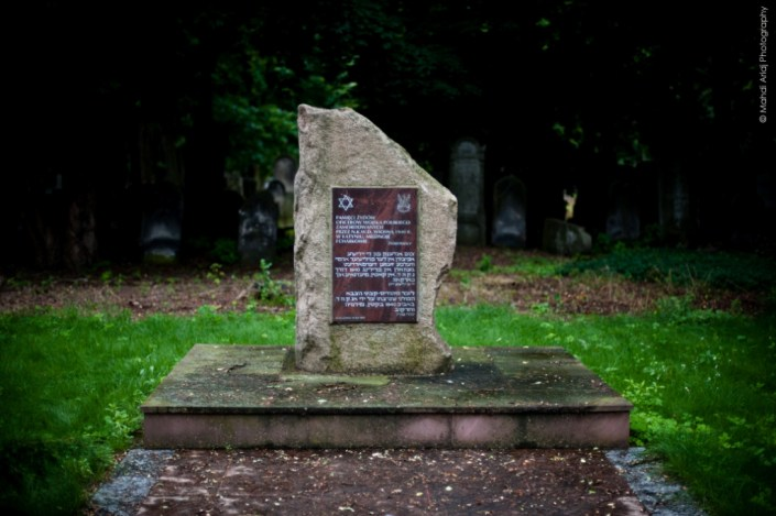 The jewish cemetary of warsaw - Poland