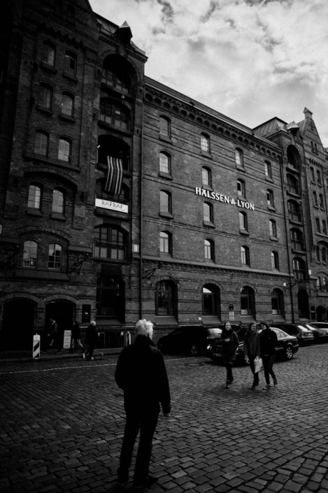 Speicherstadt Building over oak logs - Hamburg