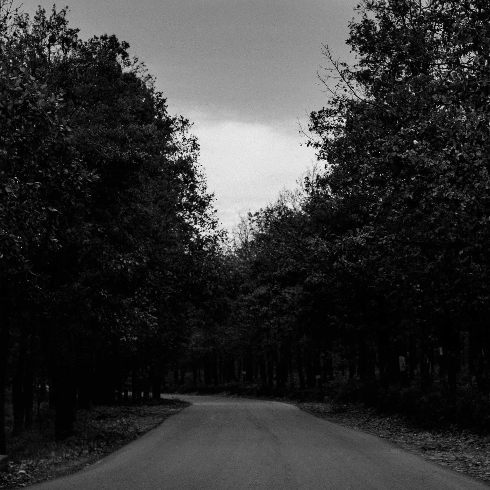 Sur la route d'Azeffoun - A trip to Azeffoun