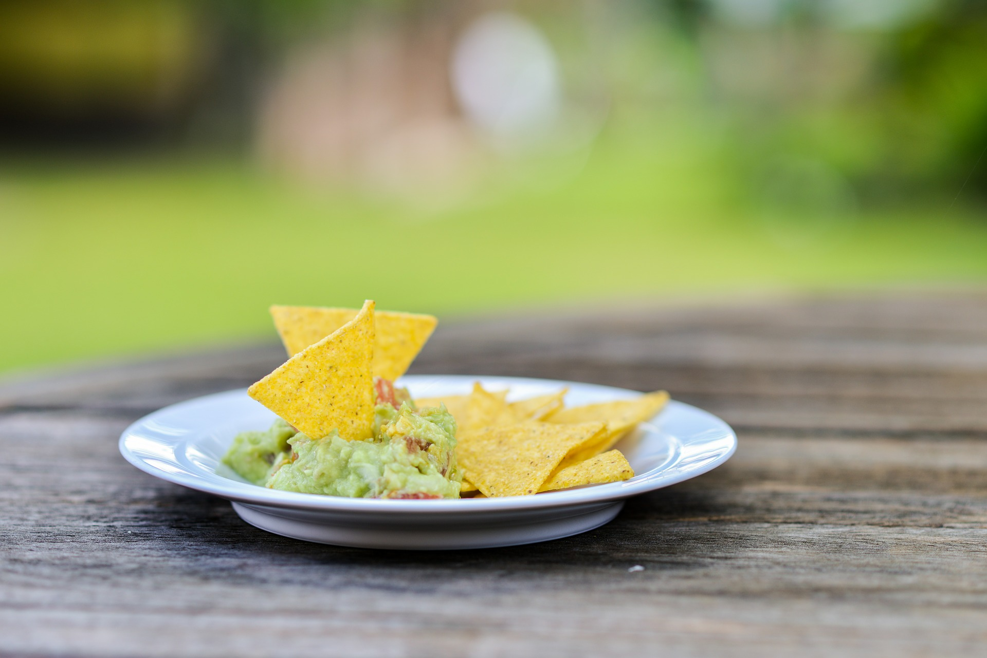 Sabra Guacamole vs. Wholly Guacamole
