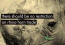 Domestic Trade in Rhino Horn