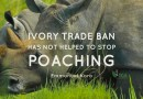 Appeal to Chinese Government Not to Ban Ivory Trade
