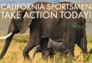 ALERT! California African Big Five Bill Passes Committee