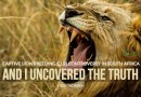 Uncovering the Truth – Captive Lion Breeding (CLB) Controversy in South Africa.