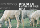 Official Inquiry Into the Workings and Concepts of the NSPCA