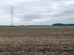 Fields and Pylons