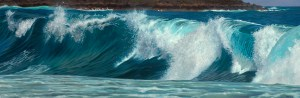 Hoyt_Wave I
