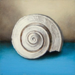 Small Whelk on Blue by Alex Dunwoodie